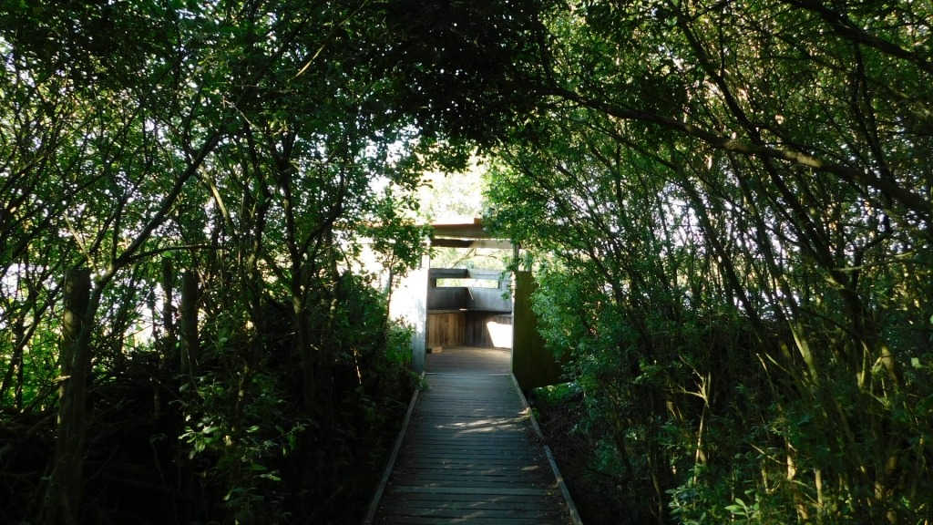 Vogelkijkhuis