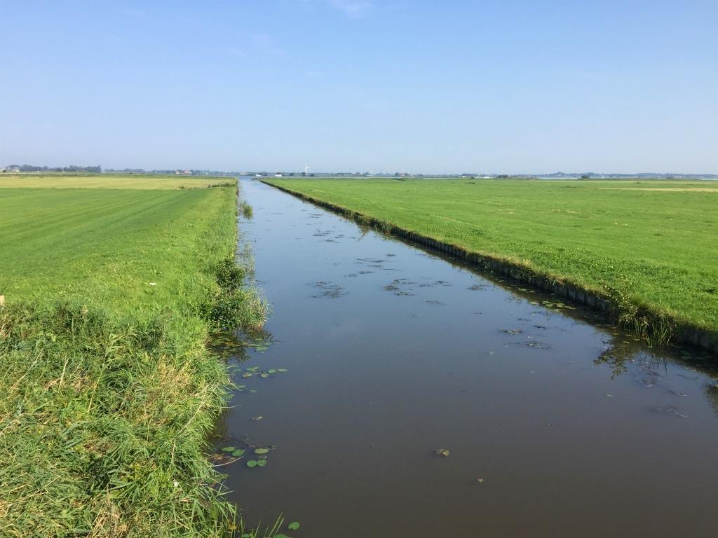elfstedenfietstocht Friese natuur